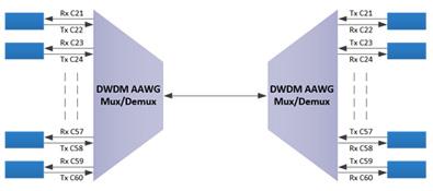 DWDM AAWG module 6